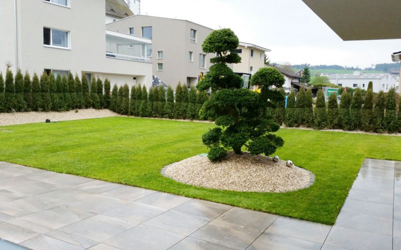 Garten Gartenbau Gartenpflege Traumgarten Gartentraum